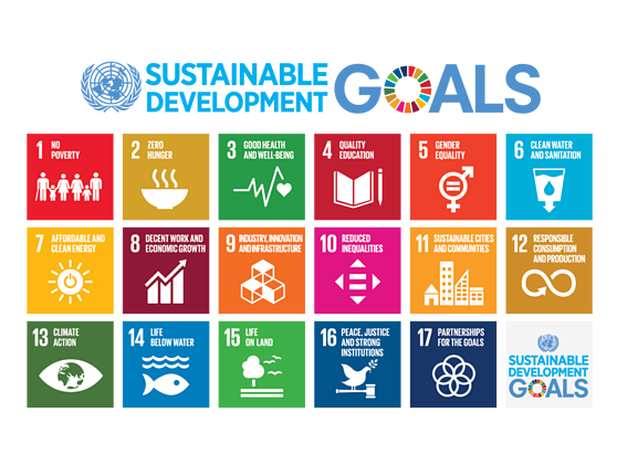 787px-Sustainable_Development_Goals